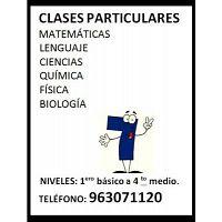 CLASES PARTICULARES EN STGO ORIENTE