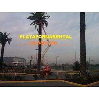 GENIE JLG PLATAFORMAS ELEVADORA BRAZOS ARTICULADOS ARRIENDO