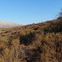 Accesible y hermosa, parcela Oasis de La Campana, Hijuelas